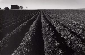 Wright Morris, Plowed Land, Iowa, 1947, silver print, 1975