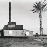 Wright Morris, Powerhouse and Palm Tree, Near Lordsburg, New Mexico, 1940, silver print, 1975