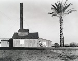 Wright Morris, Powerhouse and Palm Tree, Near Lordsburg, New Mexico, 1940, silver print, 1975