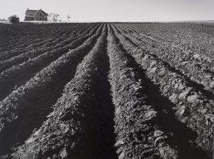 Wright Morris, Plowed Land, Iowa, 1947 silver print, 1975
