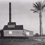 Wright Morris, Powerhouse and Palm Tree, Near Lordsburg, New Mexico, 1940 silver print, 1975
