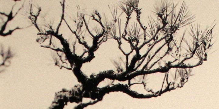 Dana Fritz, Lava and Fog, archival pigment print (3/13), n.d.
