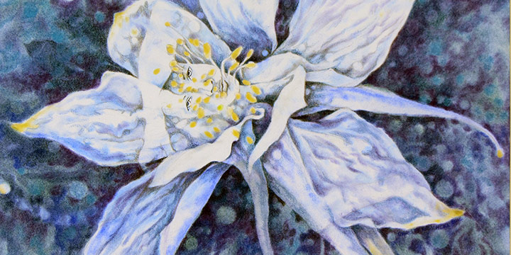 Christy Kosmicki, Hidden Beauty, Mixed Media on Aquarius II, n.d.