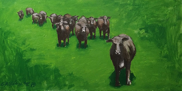 Cassia Kite, Yearling Cattle in the Pasture, SE Nebraska, acrylic, oil, 2019
