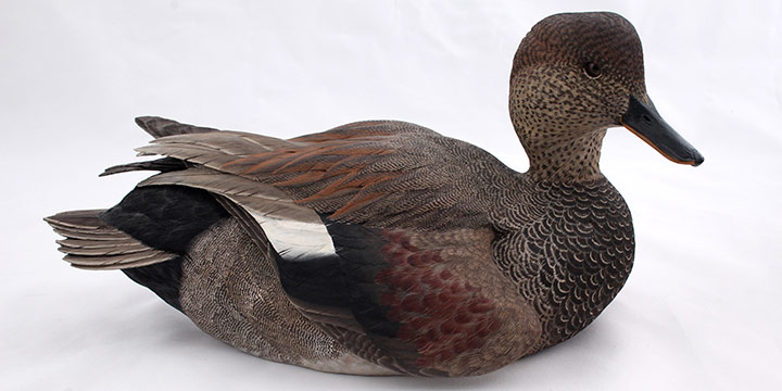 William H. Browne III, Gadwall Drake, wood, acrylic, glass, 1993, 7¼ × 13¾ × 6½""