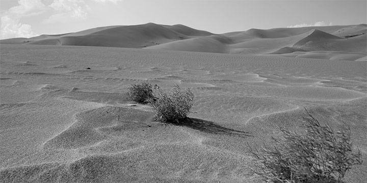 Richard Schuessler, Empty Sands, digital print on paper, 2021