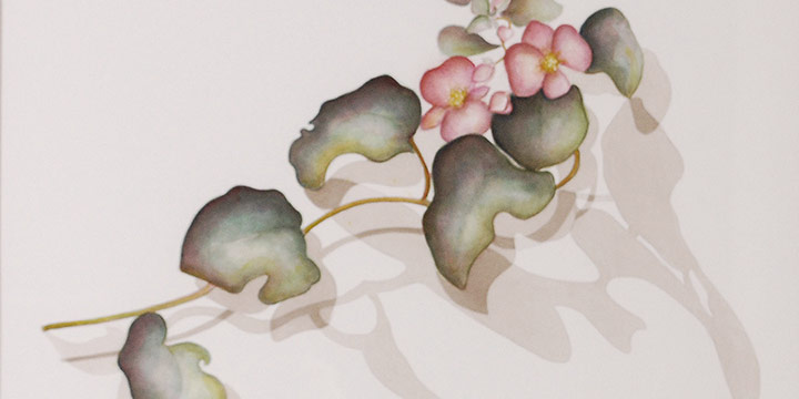 Sheila Downey, Pink Begonia, Watercolor on Paper, 2021